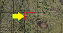 Photo of 00000 No Access -North Of Terkam Street, Malabar, FL 32950 (MLS # 815171)