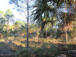 Photo of Malabar, FL 32950 (MLS # 815407)