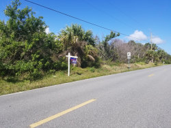 Photo of 5870 Old Dixie Highway, Grant, FL 32949 (MLS # 839508)