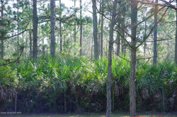 Photo of 000 Gator Way Lane, Malabar, FL 32950 (MLS # 845617)