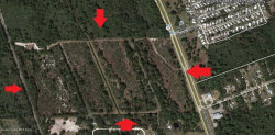 Photo of 0 S Ridgewood Avenue, Edgewater, FL 32141 (MLS # 852046)