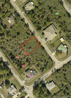 Photo of 2782 Wright Avenue, Palm Bay, FL 32909 (MLS # 858521)