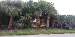 Photo of 0000 Surf Drive, Cape Canaveral, FL 32920 (MLS # 861099)