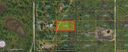 Photo of 0 Palm Frond Road, St. Cloud, FL 34771 (MLS # 863868)