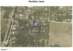 Photo of 0000 Panther Lane, Mims, FL 32754 (MLS # 864548)