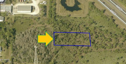 Photo of 00000 No Road Access - Lett Lane Lane, Malabar, FL 32950 (MLS # 865936)