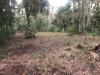 Photo of 0 Grantline Rd., Mims, FL 32754 (MLS # 871517)