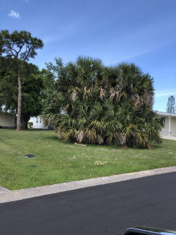Photo of 822 Vireo Drive, Barefoot Bay, FL 32976 (MLS # 871663)