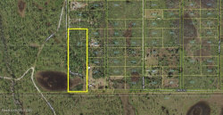 Photo of 00 Palm Frond Road, St. Cloud, FL 34771 (MLS # 876347)