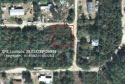 Photo of 0 144th Place, Umatilla, FL 32784 (MLS # 881044)