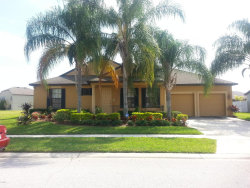 Photo of 3946 Blossom Dew Drive, Kissimmee, FL 34746 (MLS # 799749)