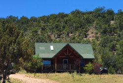 Photo of 43300 N Constitution Pass, Seligman, AZ 86337 (MLS # 1022657)