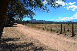 Photo of 10499 W Tough Country Trail, Skull Valley, AZ 86338 (MLS # 1001441)