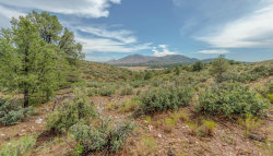 Photo of 112xx N Dove Tail Road Q, Prescott, AZ 86305 (MLS # 1005401)