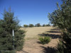 Photo of 00 N Road 1 West- # 306-23-028x, Chino Valley, AZ 86323 (MLS # 1007261)