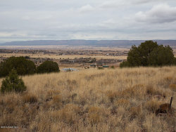 Photo of 0 No Name, Chino Valley, AZ 86323 (MLS # 1009542)