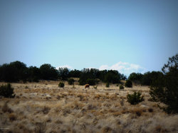 Photo of 01 Headwater Ranch, Chino Valley, AZ 86323 (MLS # 1011143)