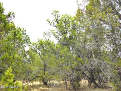 Photo of Lot 982 Westwood Ranches, Seligman, AZ 86337 (MLS # 1012850)