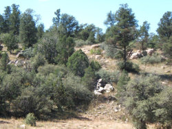 Photo of 16700 N Top View Lane, Prescott, AZ 86305 (MLS # 1012902)