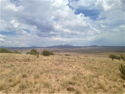 Photo of 153 Sierra Verde Ranch, Seligman, AZ 86337 (MLS # 1013970)