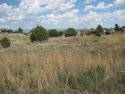 Photo of 2915 N Aztec Place, Chino Valley, AZ 86323 (MLS # 1014454)