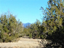 Photo of 105 Off Of Stockmans, Ash Fork, AZ 86320 (MLS # 1016713)