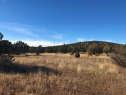 Photo of 0 Cienega, Ash Fork, AZ 86320 (MLS # 1017435)