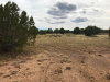 Photo of 45 Deer End Road, Ash Fork, AZ 86320 (MLS # 1018245)