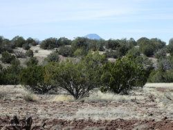 Photo of 216 Couchman Trail, Ash Fork, AZ 86320 (MLS # 1019093)