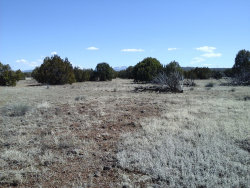 Photo of Lot 251c Juniperwood Ranch, Ash Fork, AZ 86320 (MLS # 1019372)