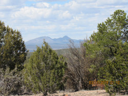 Photo of 41341 N Caprica Way, Ash Fork, AZ 86320 (MLS # 1019428)