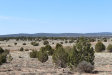 Photo of Tbd Hyde Park Road, Seligman, AZ 86337 (MLS # 1019549)