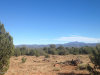 Photo of 462 Un Named Road, Ash Fork, AZ 86320 (MLS # 1019868)