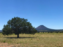 Photo of 254 Horse Soldiers, Ash Fork, AZ 86320 (MLS # 1021160)