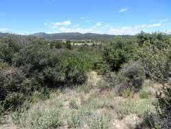 Photo of 16790 W Blue Sky Drive, Peeples Valley, AZ 86332 (MLS # 1021274)