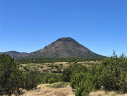 Photo of 81 Picacho Butte, Ash Fork, AZ 86320 (MLS # 1022390)