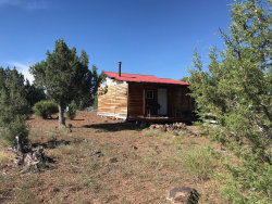 Photo of 254 Off Of Camp Road, Ash Fork, AZ 86320 (MLS # 1022659)