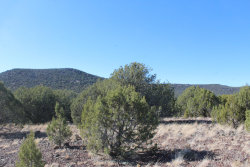 Photo of Lot 274 Olivas Alone, Seligman, AZ 86337 (MLS # 1023436)