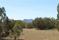Photo of Lot 563 Howling Coyote, Seligman, AZ 86337 (MLS # 1024411)