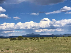 Photo of 64 W2 Off Of Old Hwy 66, Ash Fork, AZ 86320 (MLS # 1028369)