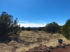 Photo of 1203 County Line Circle, Ash Fork, AZ 86320 (MLS # 1029452)