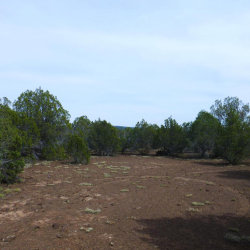 Photo of 255 South Of Camp Road, Ash Fork, AZ 86320 (MLS # 994144)