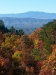 Photo of 1081 Cove Rd # 1031, Sevierville, TN 37876 (MLS # 1007175)