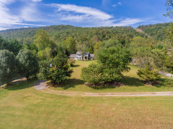 Photo of 954 Old Hen Valley Rd, Oliver Springs, TN 37840 (MLS # 1017839)