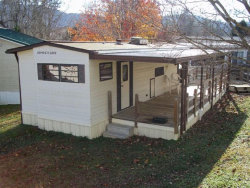 Photo of 634 Whistling Swan St, Townsend, TN 37882 (MLS # 1027186)