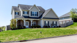 Photo of 2111 Briarhill Lane, Knoxville, TN 37921 (MLS # 1038454)