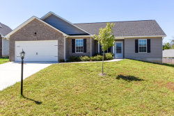 Photo of 2707 Ely Park Lane, Knoxville, TN 37924 (MLS # 1038919)