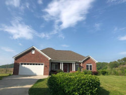 Photo of 108 Brenray Drive, Harriman, TN 37748 (MLS # 1040503)