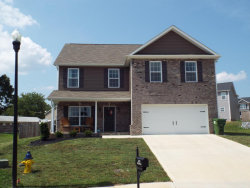 Photo of 240 Whistlestop Lane, Maryville, TN 37804 (MLS # 1049348)