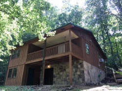 Photo of 227 Jd Walden Rd, Ten Mile, TN 37880 (MLS # 1050171)
